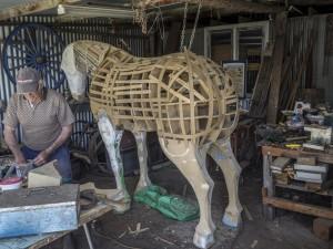 Horse-fram1